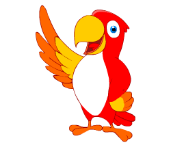 English words: parrot