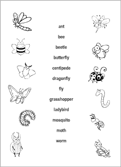 Worksheets for kids learning English