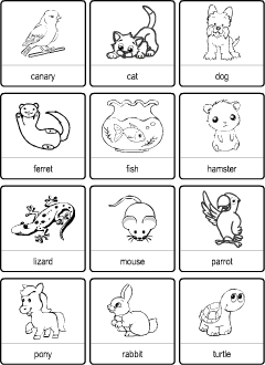 English Vocabulary Printables Bingo Cards